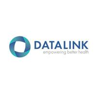 Datalink Software Logo