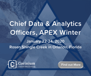 Chief Data Analytics Officer APEX Side Banner