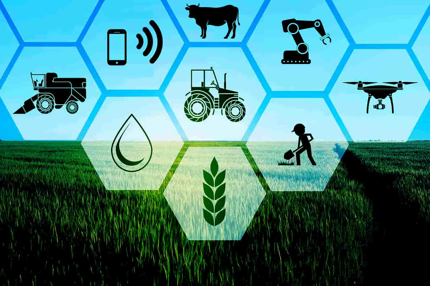 How Modern Farming Technology Covers Agricultural Risk?
