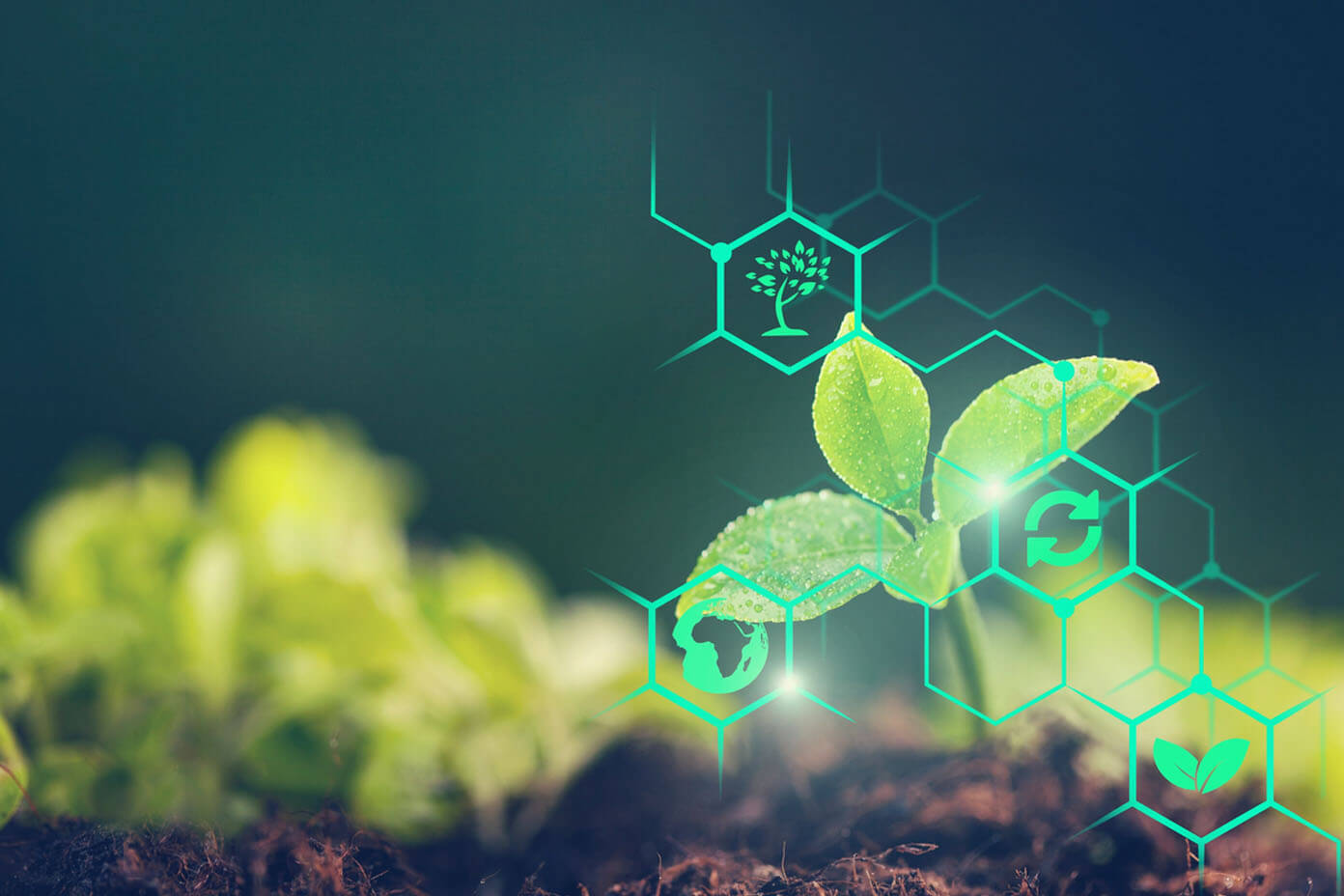 How Agritech is strengthening the Agricultural Value chain After the Pandemic